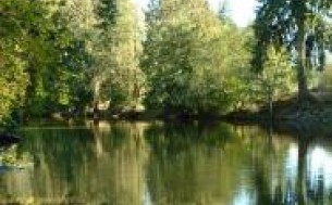 Chemainus River Campgrounds